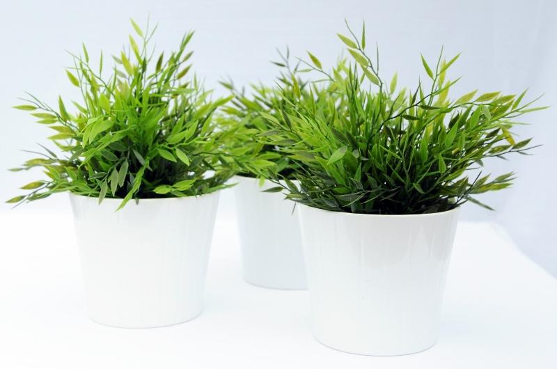 Benefits U0026 Advantages Of Artificial Plants