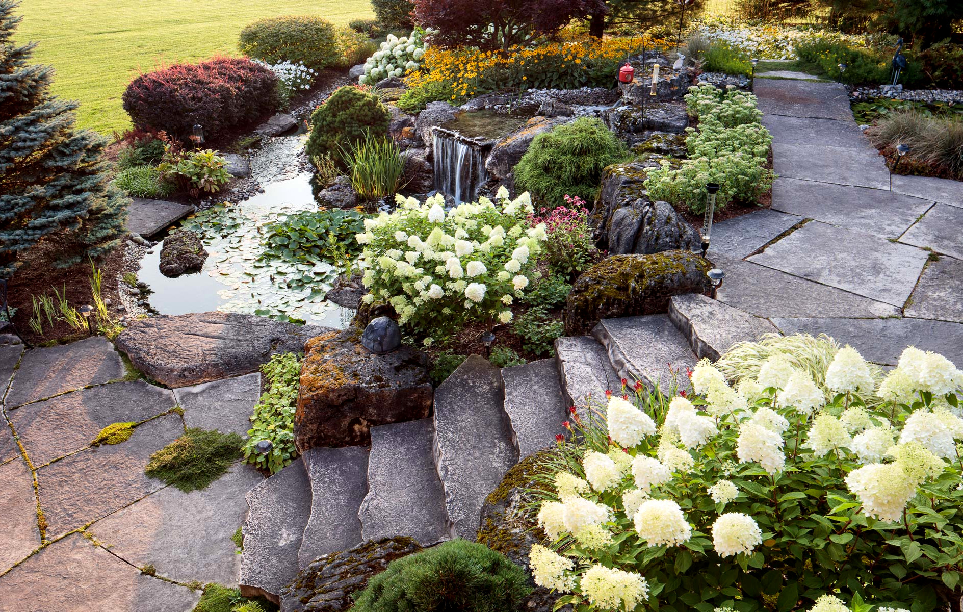 tcl landscaping guide turning dream homes into reality